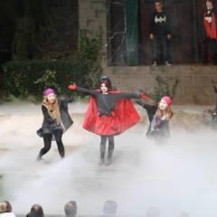 2015 Der kleine Vampir